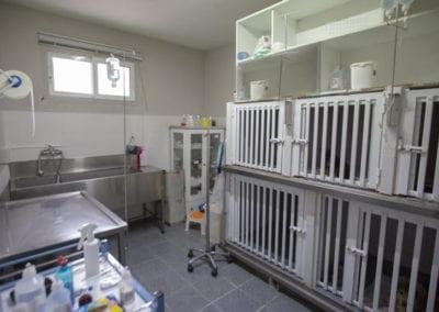 Νοσηλεία Λοιμωδών Άγιος Μόδεστος