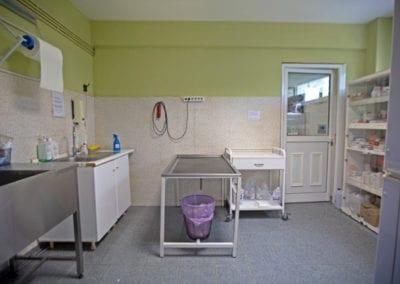 Νοσηλεία Σκύλων Άγιος Μόδεστος